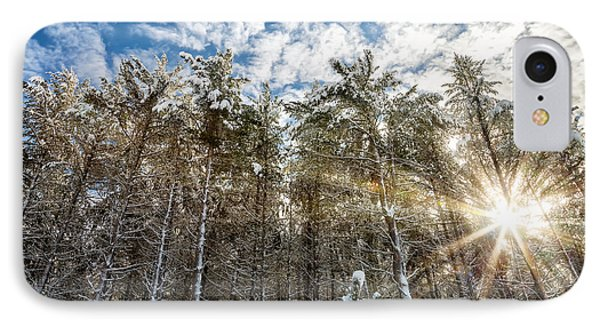 Snowy Pines With Sunflair Phone Case by Brian Boudreau