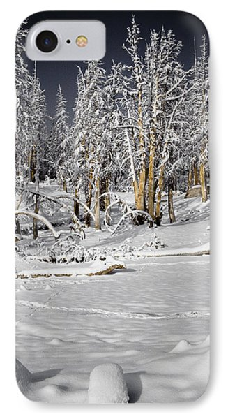 Snowy Silence Phone Case by Chris Brannen