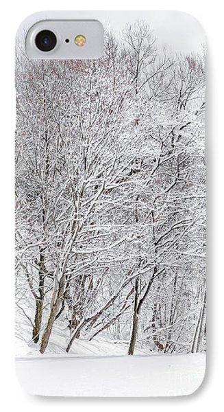 Snowy Trees In Winter Park IPhone Case by Elena Elisseeva