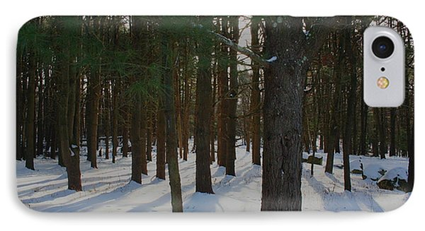 Snowy Trees Phone Case by Stephen Melcher