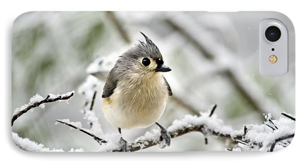 Snowy Tufted Titmouse IPhone 7 Case by Christina Rollo