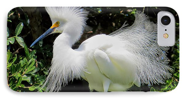 Snowy White Egret Breeding Plumage IPhone Case by Jennie Breeze