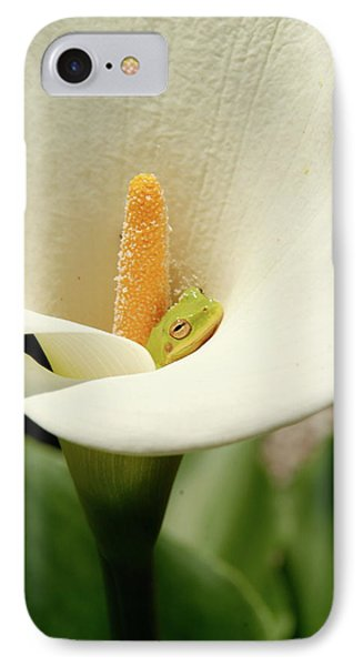 Snug As A Bug  IPhone Case by Kathy Gibbons