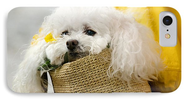 Snuggled Poodle Dog Phone Case by Donna Doherty