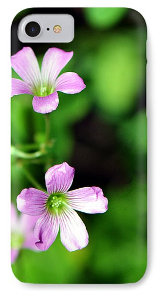 So Delicate In Purple. Texas Spring Perennial IPhone Case by Connie Fox