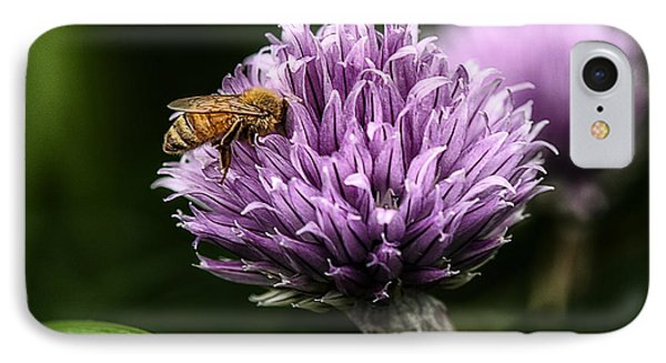 Honeybee iPhone 7 Case - So Into You by Susan Capuano