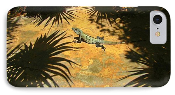 Soaking Up The Rays Phone Case by Halifax photographer John Malone