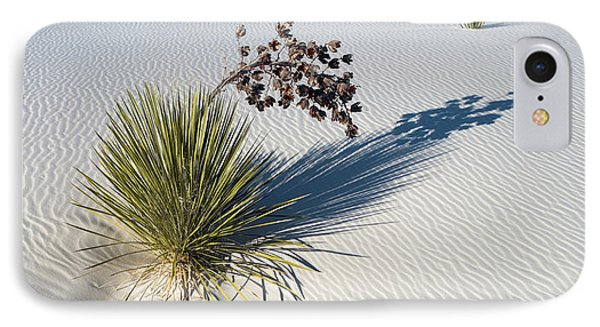 Soaptree Yucca Yucca Elata At Sand IPhone Case by Panoramic Images
