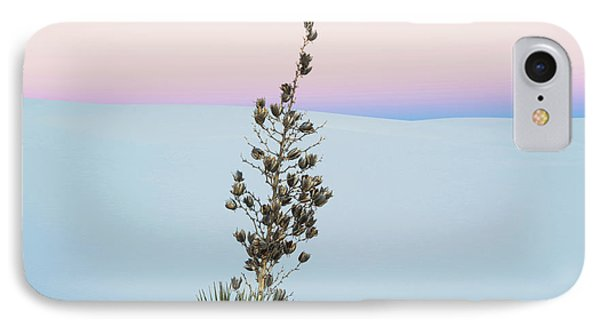 Soaptree Yucca Yucca Elata In Predawn IPhone Case by Panoramic Images