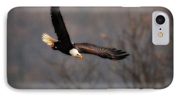 Soar Like An Eagle Phone Case by Angel Cher
