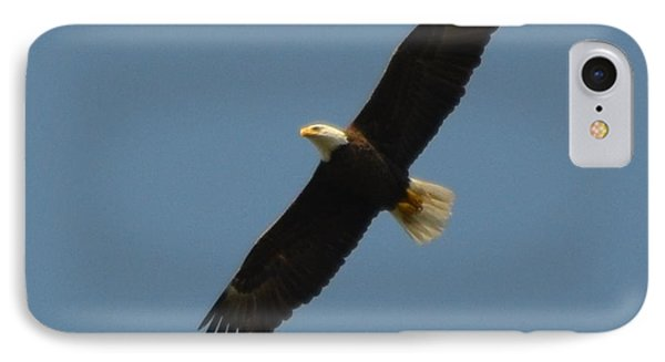 Soaring Bald Eagle Phone Case by Jeff at JSJ Photography
