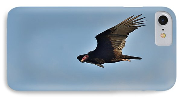 IPhone Case featuring the photograph Soaring by David Porteus