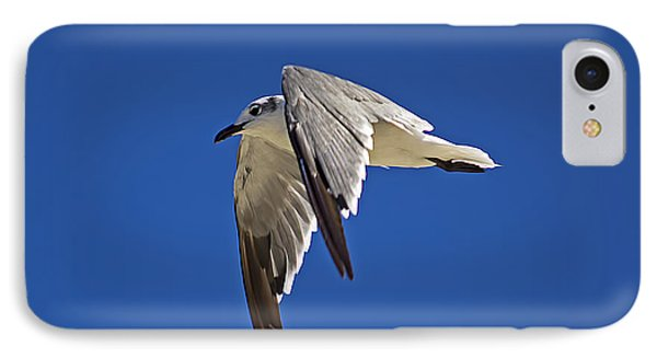 Soaring High IPhone Case by Kenneth Albin
