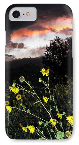Socorro Sunset Phone Case by Steven Ralser