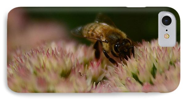 Soflty The Bee IPhone Case