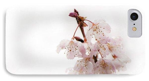 Soft Cherry Plum Phone Case by Anne Gilbert