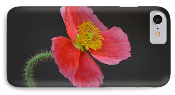 Soft IPhone Case by Debby Pueschel