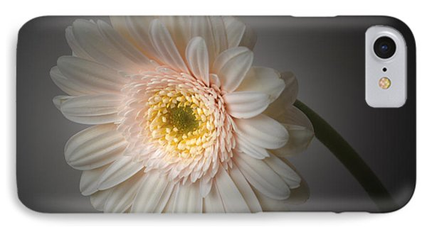 Soft Light. IPhone Case by Terence Davis