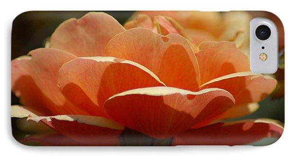 IPhone Case featuring the photograph Soft Orange Flower by Matt Harang