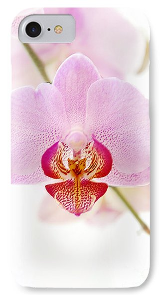 Soft Orchid Phone Case by Hannes Cmarits