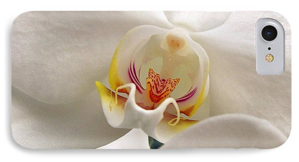Soft Orchid IPhone Case by Kathi Mirto