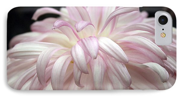 Soft Petals II IPhone Case by Mary Haber