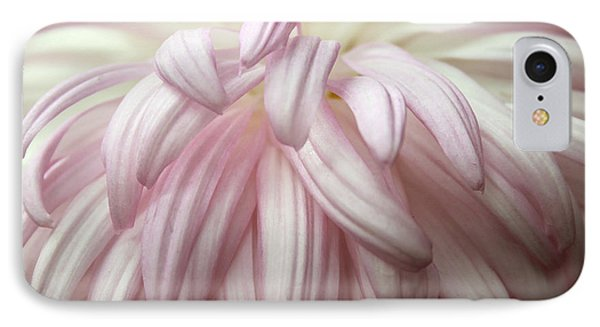 Soft Petals IPhone Case by Mary Haber