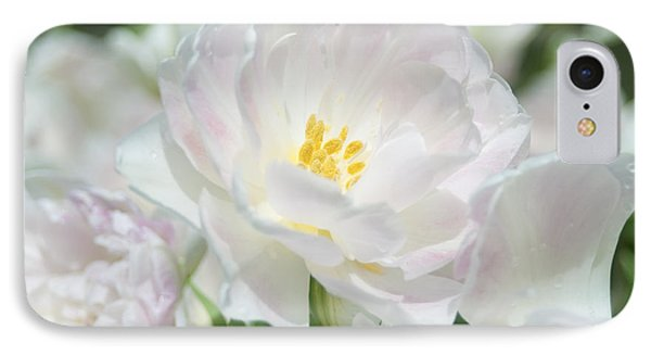 IPhone Case featuring the photograph White Flower Is Beautiful by Haleh Mahbod