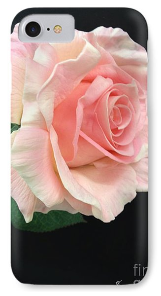 IPhone Case featuring the photograph Soft Pink Rose 1 by Jeannie Rhode