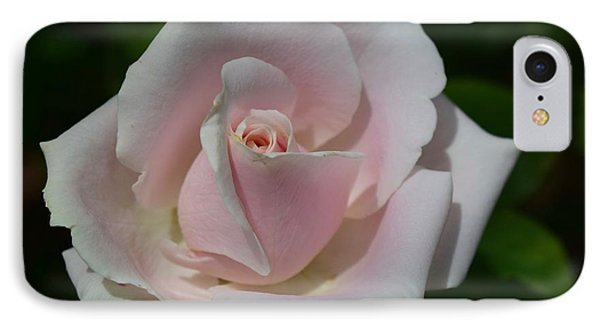 IPhone Case featuring the photograph Soft Pink Rose by Jeannie Rhode