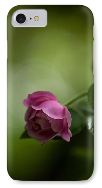 Soft Pink Rose IPhone Case by Mike Reid