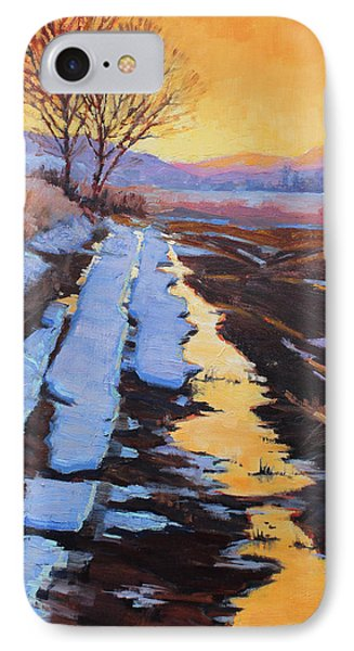 Soft Reflections At Sunset Phone Case by Susan McCullough