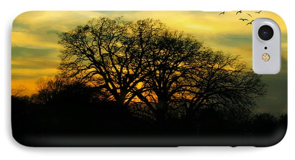 Soft Sunset IPhone Case by Joan Bertucci
