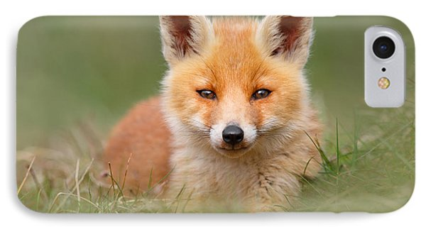 Softfox -young Fox Kit Lying In The Grass IPhone Case