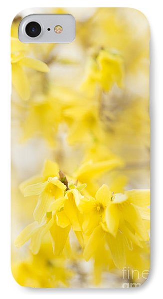 Softly Yellow IPhone Case by Anne Gilbert