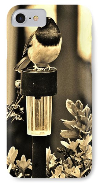 IPhone Case featuring the photograph Solar Light Sitting by VLee Watson