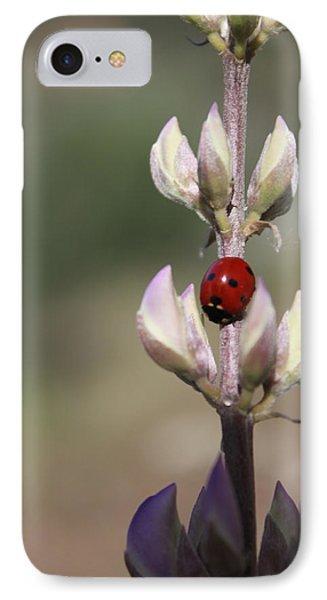 Solo Ladybug Phone Case by Ashley Balkan