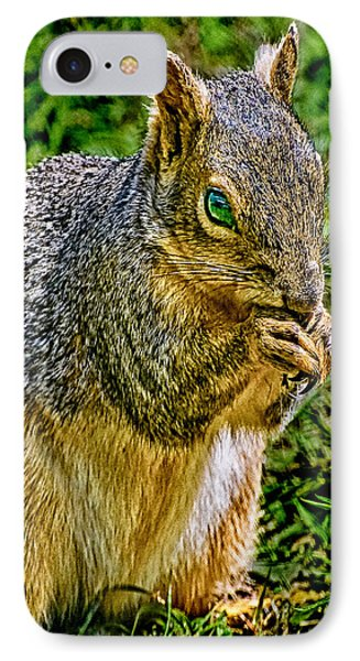 Some Squirrels Are Big IPhone Case by Bob and Nadine Johnston