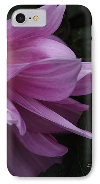 IPhone Case featuring the photograph Somehow by Geri Glavis