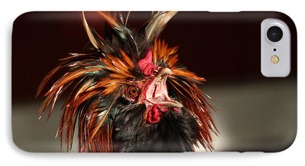 Something To Crow About IPhone Case by Lynn Sprowl
