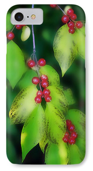 Somewhere In A Dream IPhone Case by Ellen Tully