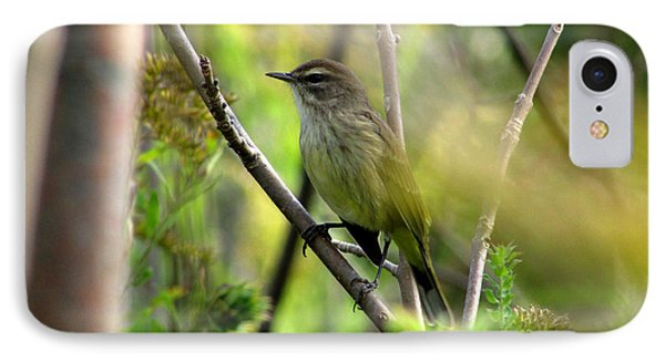 IPhone Case featuring the photograph Songbird In The Glen by Kimberly Mackowski