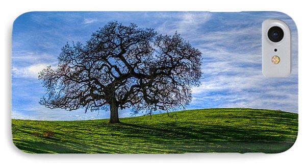 Sonoma Tree Phone Case by Chris Austin