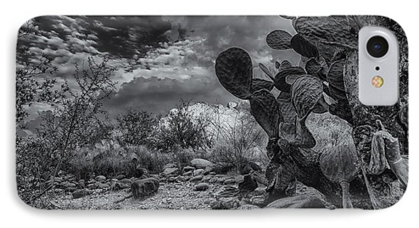 IPhone Case featuring the photograph Sonoran Desert 15 by Mark Myhaver
