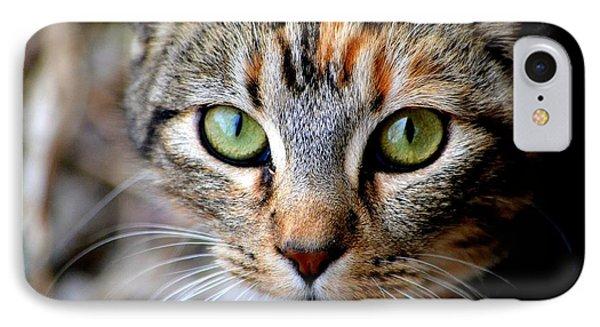 Soul Cat IPhone Case by Deena Stoddard