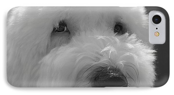 Soulful Eye's Old English Sheep Dog IPhone Case by Peggy Franz