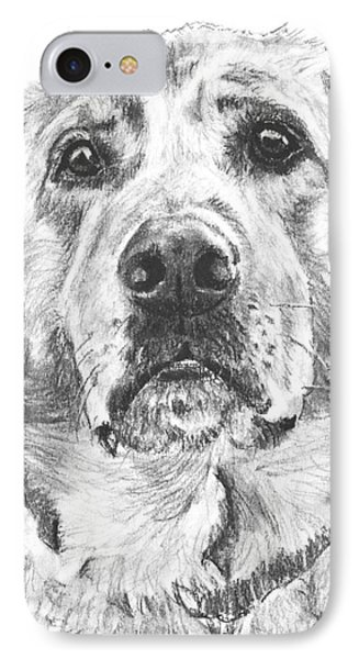Soulful Lab Face IPhone Case by Kate Sumners