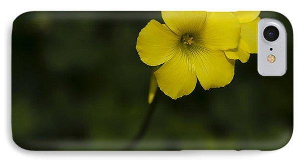 Sour Grass IPhone Case