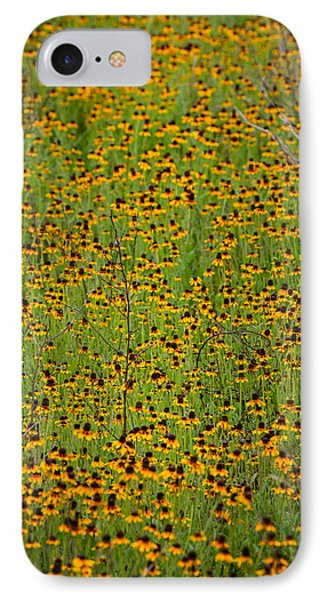 South Texas Mosiac IPhone Case