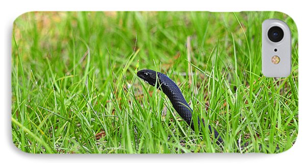 Southern Black Racer IPhone Case by Al Powell Photography USA